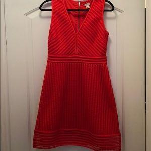 J.Crew Dress!